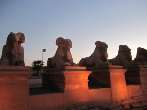 Cairo and Luxor 117